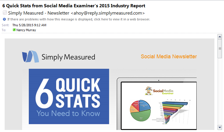 Social Critters 5 Common Email Marketing Mistakes above the fold 3